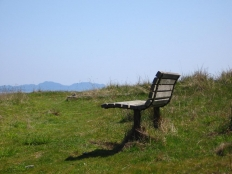 Bench at Grassy Point